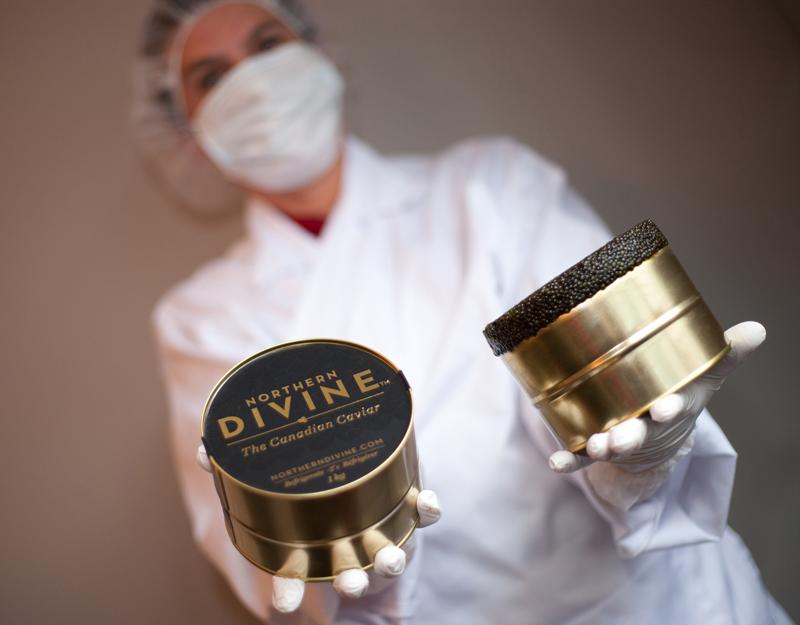 Canadian Caviar